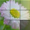 Sliding Puzzle: Flowers