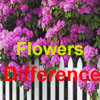 Spot Difference – Flowers