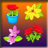Springtime Flower Match