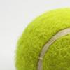 Tennis pro ball