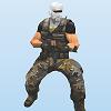 Terrorist Assault
