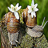 Two little snail slide puzzle