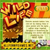 Wild Life Puzzle