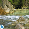 Wild River Jigsaw Puzzle